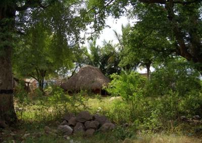 l'arrière d'un village typique sur la route entre Mahabalipuram et Tiruvannamalai (Tamil Nadu)