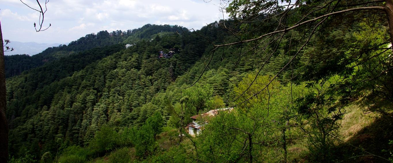 Une vue aux environs de Tattapani (Himachal Pradesh)