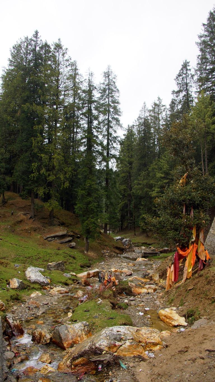 Les abords du merveilleux site perdu des temples de Giri Ganga (Karapather, Himachal Pradesh)