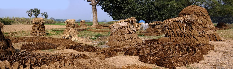 A Varanasi, comme en de nombreux endroits, le combustible le plus courant est la bouse de vache séchée (1)