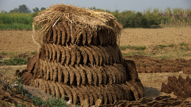 A Varanasi, comme en de nombreux endroits, le combustible le plus courant est la bouse de vache séchée (2)