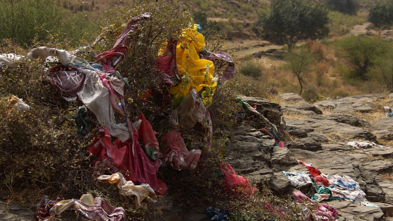 Près de Nawalgarh (Rajasthan), un chemin de pèlerinage parsemé d'ex-votos
