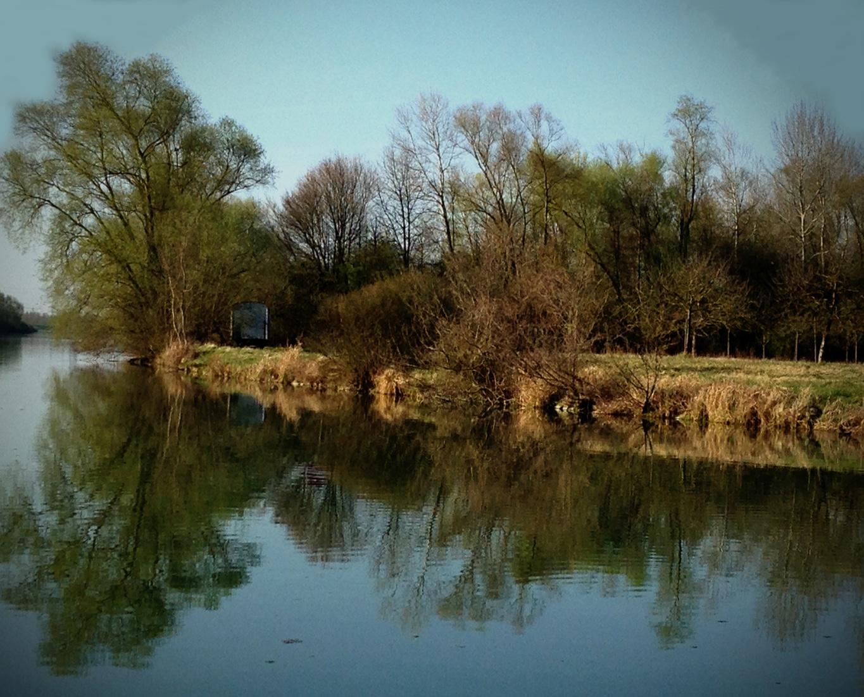 Paix et sérénité des rives du Rhin un matin d'avril