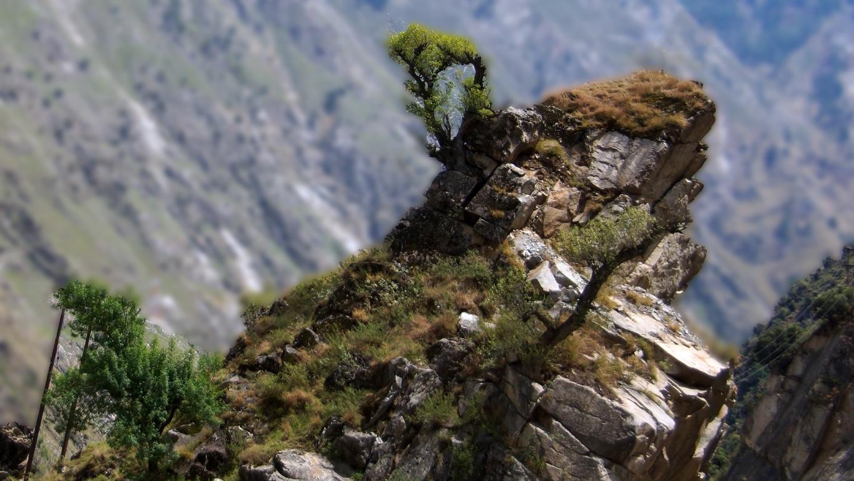 Sur la route entre Kalpa et Rekong Peo (Himachal Pradesh)