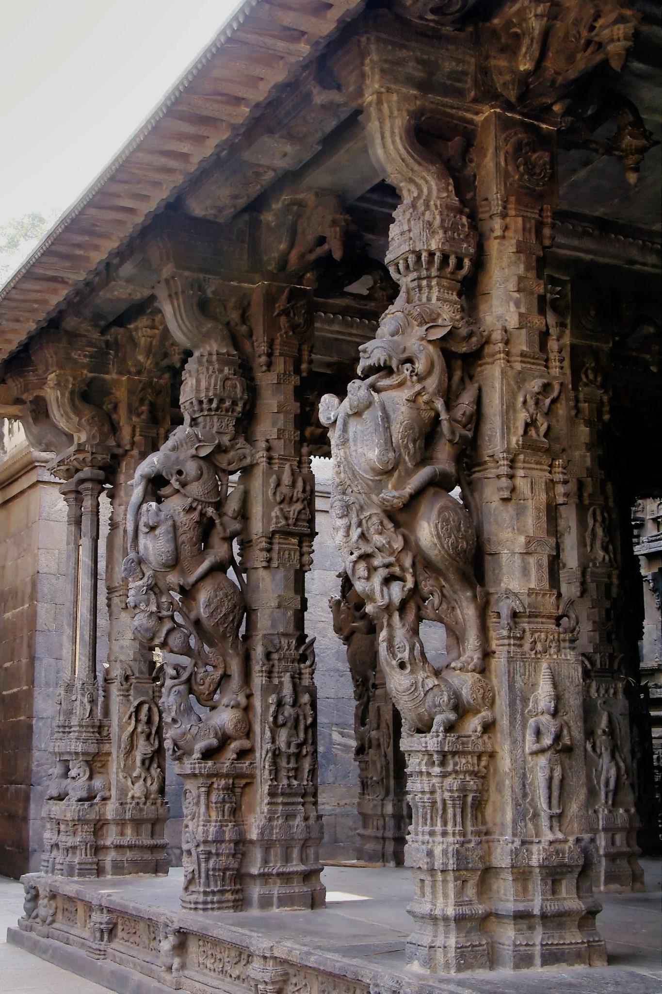 monstres sculptés colonne temple de Vellore