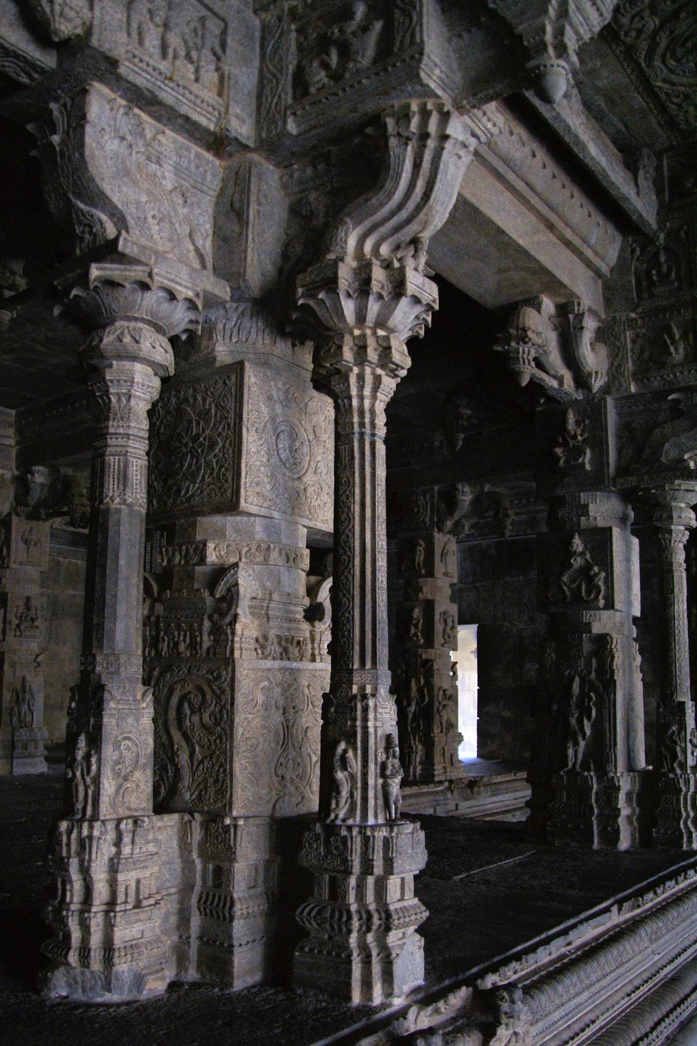 élégantes colonnes en bordure du temple de Vellore